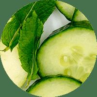 Commandez des repas et des collations santé qui regorgent d'ingrédients vivifiants