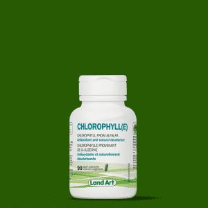 Chlorophylle Land art en capsules